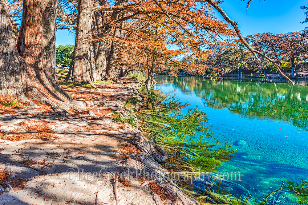 Garner State Park has the most beaufiful clear emerald green waters and on this day with no wind you can see the reflections of the cypress in the tranquil water of the Frio River and the cypress roots as they reach out into the waters for a drink.  The cypress trees were starting to drop their fall leaves but lucky for us they had not done it yet so we got these lovely fall landscape colors.