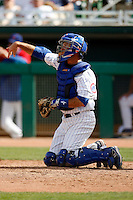 Mark Johnson  - Chicago Cubs 2009 spring training.Photo by:  Bill Mitchell/Four Seam Images