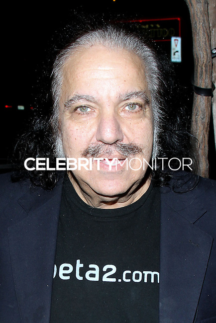 WEST HOLLYWOOD, CA - JANUARY 26: Ron Jeremy at the Republic Records 2014 GRAMMY Awards Party held at 1 OAK on January 26, 2014 in West Hollywood, California. (Photo by David Acosta/Celebrity Monitor)