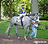 Welcome Guest before The Unbridled Belle Stakes at Delaware Park on 8/15/13