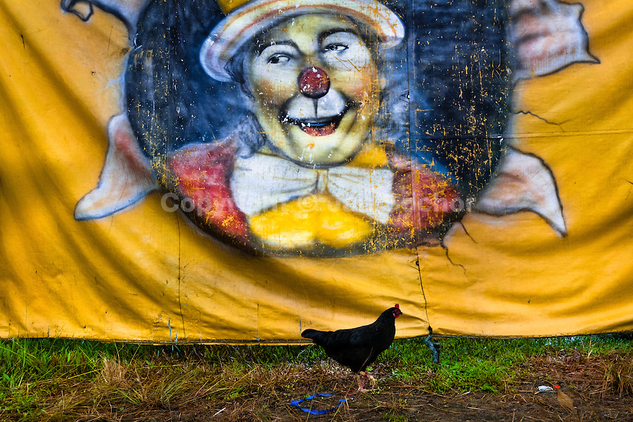 A clown picture painted on a tent of the Circo Anny, a family run circus wandering the Amazon region of Ecuador, 4 July 2010. The Circo Anny circus belongs to the old-fashioned traveling circuses with a usual mixture of acrobat, clown and comic acts. Due to the general loss of popularity caused by modern forms of entertainment such as movies, TV shows or internet, these small family enterprises balance on the edge of survival. Circuses were pushed away and now they have to set up their shows in more remote villages. The circus art and culture is slowly dying.