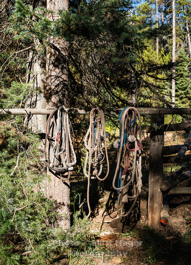 Deer saddles and ropes near the horse corral at Trefren Outfitters on Greyback Ridge in the Hoeback Drainage of Wyoming Region H, outside of Alpine, Wyoming, September 22, 2015.<br /> <br /> Photo by Matt Nager