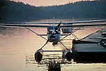Float planes at a dock near midnight