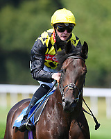 Headshot ridden by John Fahy goes down to the start of The AJN Steelstock Kentford British EBF Novice Stakes    during Horse Racing at Salisbury Racecourse on 9th August 2020