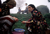 Cepne Women...The severe geography of these mountains helps to retain culture. Girls in this village vote every year as to whether they will continue to wear these ancient outfits that date back to the Genoese traders. On the other side of the mountains, clothing is completely homogenous. ..