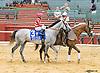 Savings Account before The Robert G. Dick Memorial Stakes (gr 3) at Delaware Park on 7/9/16