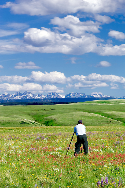 Wildflowers on Zumwalt Prairie with photograspher and Seven Devils Mountains, ID