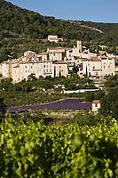 Europe/France/Rhône-Alpes/26/Drôme/Env de Nyons/Venterol: le village ,son vignoble AOC Côtes du Rhône, et un champ de Lavande