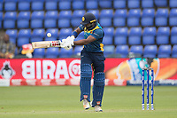 Kusal Perera (Sri Lanka) pulls behind square to long  leg for a single during Afghanistan vs Sri Lanka, ICC World Cup Cricket at Sophia Gardens Cardiff on 4th June 2019