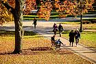 November 8, 2017; Main Quad fall 2017 (Photo by Matt Cashore/University of Notre Dame)