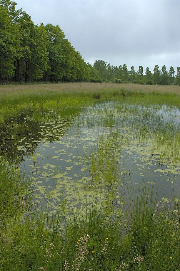 De Brand, Brabants Landschap