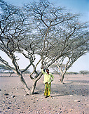 ERITREA, Gelallo, Abdu Bedri standing under an Acacia tree in his village