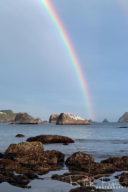 A rainbow strikes offshore along the Southern Oregon Coast near Brookings, Oregon