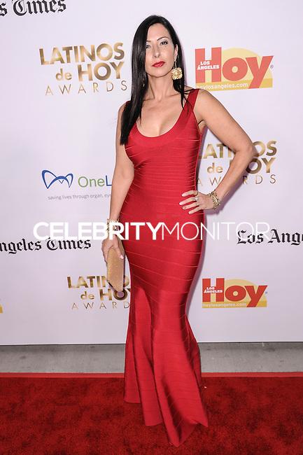LOS ANGELES, CA - OCTOBER 12: 2013 Latinos de Hoy Awards held at Los Angeles Times' Chandler Auditorium on October 12, 2013 in Los Angeles, California. (Photo by Rob Latour/Celebrity Monitor)