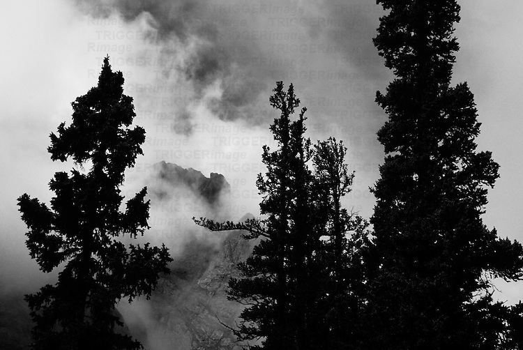 colorado dramatic mountain landscape scenery with trees and clouds in sangre de cristo range near willow lake in black and white