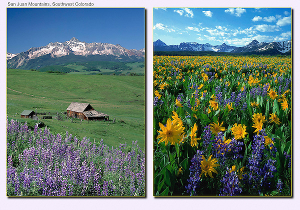 This is why the San Juan Mountains are so popular. Wilson Peak (left) and Sneffels Range in southwest Colorado.<br /> John offers guided, photo tours of Colorado's mountains.
