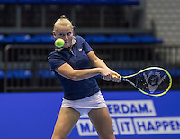 Rotterdam, Netherlands, December 13, 2016, Topsportcentrum, Lotto NK Tennis,   Suzan Lamens (NED)<br /> Photo: Tennisimages/Henk Koster