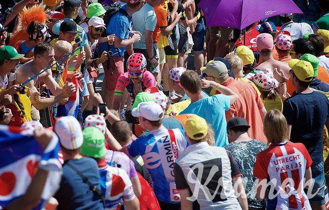Jose Rodolfo Serpa (COL/Lampre-Merida) experiencing the craziness at the Dutch Corner (nr7) up Alpe d'Huez<br /> <br /> stage 20: Modane Valfréjus - Alpe d'Huez (111km)<br /> 2015 Tour de France