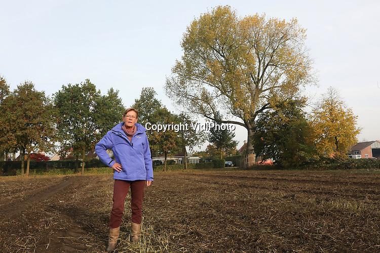 Foto: VidiPhoto<br /> <br /> RIJSBERGEN - Jos&eacute; Buiks-Hendrickx uit het Brabantse Rijsbergen, bij de populus gelrica in haar woonplaats. De populier is geplant bij haar geboorte, met als doel deze later te verkopen als bruidschat. Dat bleek niet nodig. De populier staat inmiddels op de gemeentelijke monumentenlijst.