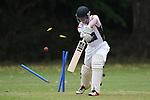 Cricket - ACOB v Stoke/Nayland