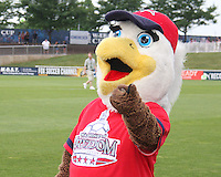 Glory, mascot of the Washington Freedom during a WPS match against the Chicago Red Stars at the Maryland Soccerplex, in Boyds Maryland on June 12 2010. The game ended in a 2-2 tie.