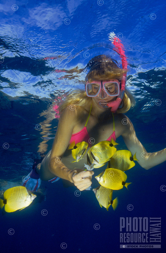 Woman snorkeling with colorful yellow striped reef fish.
