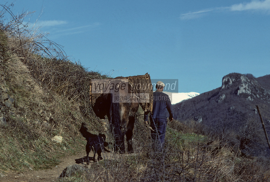 Europe/France/Midi-Pyrénées/09/Ariège/Vallée de Vicdessos/Env Lapège : Vie rurale<br /> PHOTO D'ARCHIVES // ARCHIVAL IMAGES<br /> FRANCE 1980