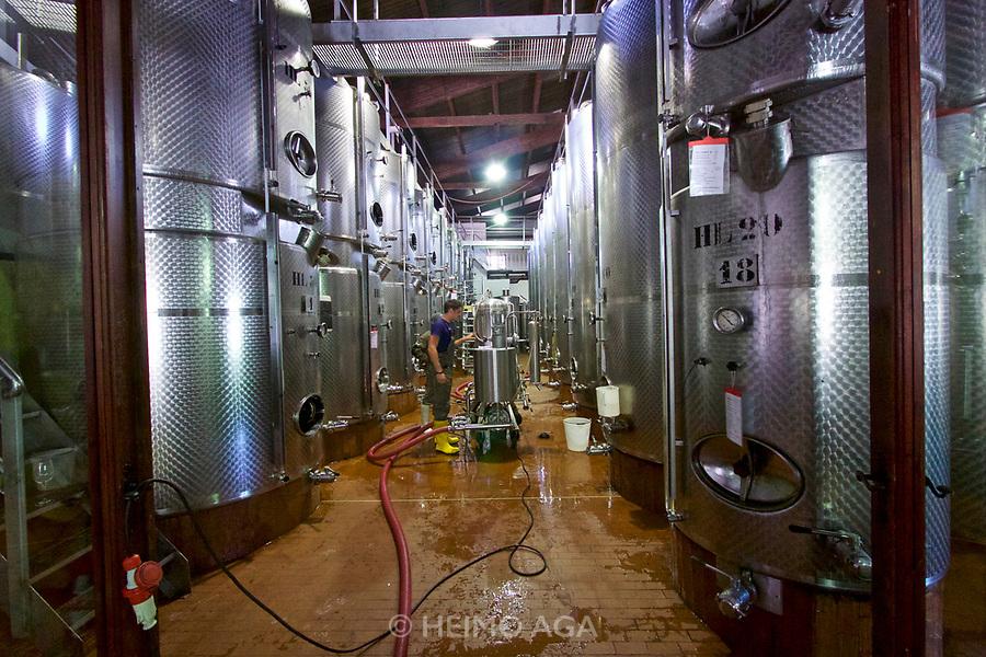 Italy, Collio. Capriva del Friuli. Fondazione Villa Russiz winery.