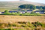 Row former miners terraced houses on moorland, Dartmoor national park, near Postbridge, Devon, England, UK