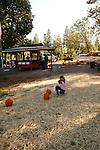 Pine-O-Mine Apple Farm is a U-Pick apple tree farm on Apple Hill near Placerville, California.