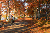 Man on a bicycle riding the Hudson RIver Greenway in Fort Washington Park