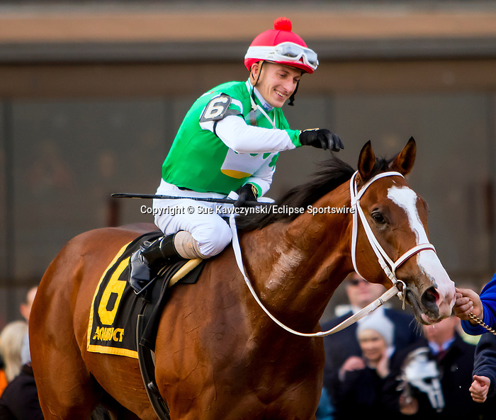 DECEMBER 01, 2018 : Maximus Mischief, ridden by Frankie Pennington, wins the Remsen  Stakes at Aqueduct Racetrack on December 24, 2018 in Ozone Park, NY.  Sue Kawczynski/ESW/CSM