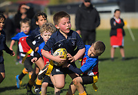Feilding Saturday morning kids Rugby at Victoria Park in Feilding, New Zealand on Saturday, 1 September 2018. Photo: Dave Lintott / lintottphoto.co.nz