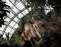 Tropical Rainforest Glasshouse (formerly Le Jardin d'Hiver or Winter Gardens), 1936, René Berger, Jardin des Plantes, Museum National d'Histoire Naturelle, Paris, France. View from below of the cave and the glass and metal roof structure of the Art Deco style glasshouse, with luxuriant tropical foliage growing around the entrance to the cave.