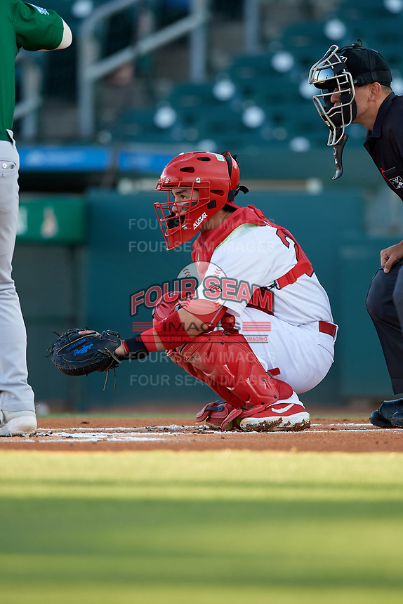 Palm Beach Cardinals catcher Alexis Wilson (26) during a Florida State League game against the Daytona Tortugas on April 11, 2019 at Roger Dean Stadium in Jupiter, Florida.  Palm Beach defeated Daytona 6-0.  (Mike Janes/Four Seam Images)