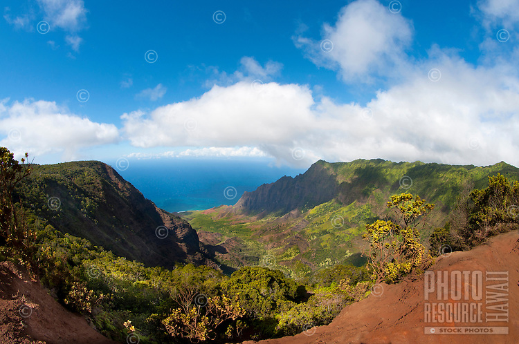 Kalalau Valley amid the towering cliffs of Na Pali, Kauai, Hawaii.