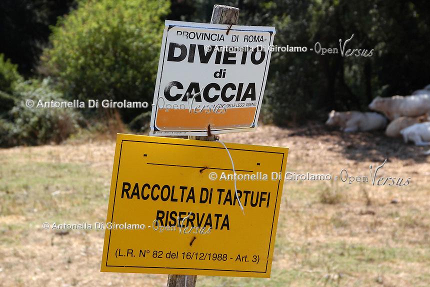 Agricoltura. Agriculture.Raccolta di tartufi riservata.Pick up of truffles reserved...