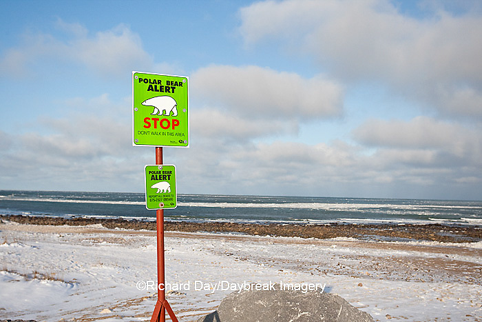 60595-01018 Polar Bear Alert sign near Hudson Bay in winter, Churchill MB Canada