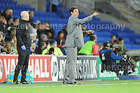 Cardiff City Stadium, Friday 11th Oct 2013. Wales manager Chris Coleman giving some instructions to his players during the Wales v Macedonia FIFA World Cup 2014 Qualifier match at Cardiff City Stadium, Cardiff, Friday 11th Oct 2014. All images are the copyright of Jeff Thomas Photography-07837 386244-www.jaypics.photoshelter.com