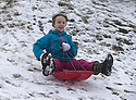 29/01/17<br /> <br /> Following overnight snowfall, Freya Kirkpatrick (9) sledges by Grinlow Tower near Buxton in the Derbyshire Peak District.<br /> <br /> All Rights Reserved F Stop Press Ltd. (0)1773 550665 www.fstoppress.com