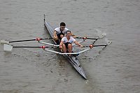 Crew: 206   MBC-TUCK    Molesey Boat Club    Mx 2x Champ <br /> <br /> Pairs Head 2017<br /> <br /> To purchase this photo, or to see pricing information for Prints and Downloads, click the blue 'Add to Cart' button at the top-right of the page.