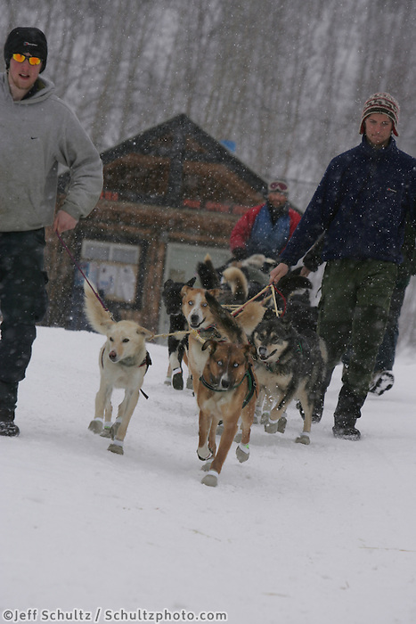 Volunteers walk Brian Mills' team down the hill after his 24 hour layover  the Tokotna checkpoint.  2005 Iditarod Trail Sled Dog Race.