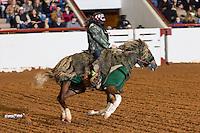 2013 Mustang Magic