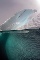 Iceberg above and below