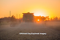 63801-07111 Farmer harvesting soybeans at sunset, Marion Co., IL