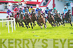 DINGLE RACES: Running the turf in the John Patrick O'Sullivan Memorial Race at the Dingle Races on Friday.