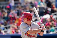 Cody Stanley (21) of the Memphis Redbirds at bat against the Omaha Storm Chasers in Pacific Coast League action at Werner Park on April 22, 2015 in Papillion, Nebraska.  (Stephen Smith/Four Seam Images)