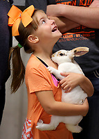 NWA Democrat-Gazette/DAVID GOTTSCHALK  Paden Lemonds, 6, holds her Mini Rex Wednesday, August 9, 2017, as she waits for judging inside the Rabbit Hall at the Benton County Fairgrounds in Bentonville. The rabbits were judged by licensed judge Tonna Thomas. The fair runs through Saturday. The fair features exhibitions, animal shows, pageant and baby contest and carnival rides and  other attractions.