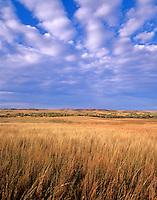 Prairie at Washita Battlefield Naitonal Historic Site near Cheyenne, Oklahoma, AGPix_0388 ..