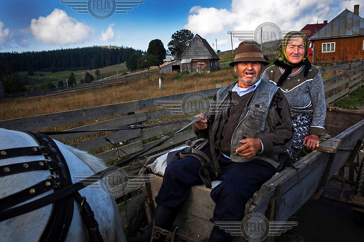 An elderly couple riding on a horse and cart.